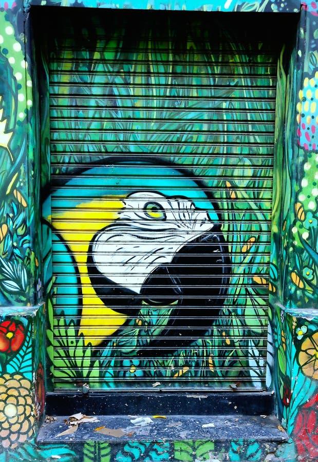 Grafitti av en papegoja royaltyfri bild