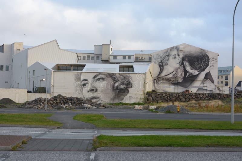 Grafitti i Reykjavik royaltyfri bild
