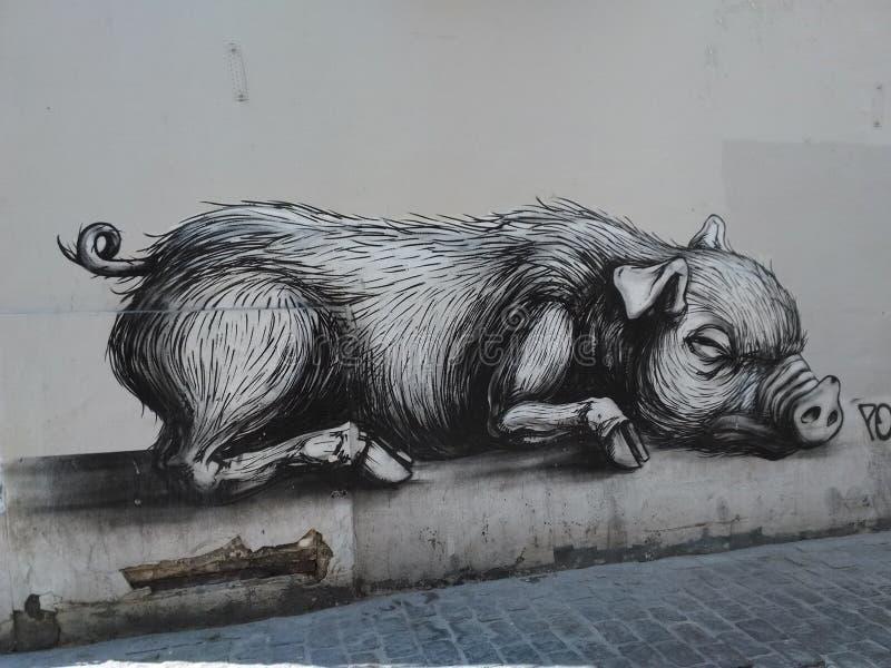 Grafittis do porco grande fotografia de stock