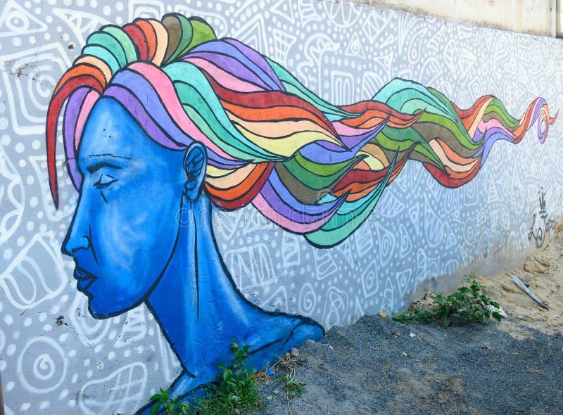 Grafittis urbanos da mulher azul do retrato com cabelo multi-colorido em Tbilisi, Geórgia imagem de stock royalty free