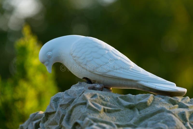 Grafsteen met duif stock foto