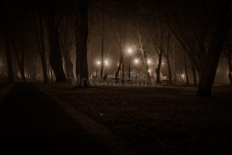 Grafstenen in de nacht royalty-vrije stock afbeelding