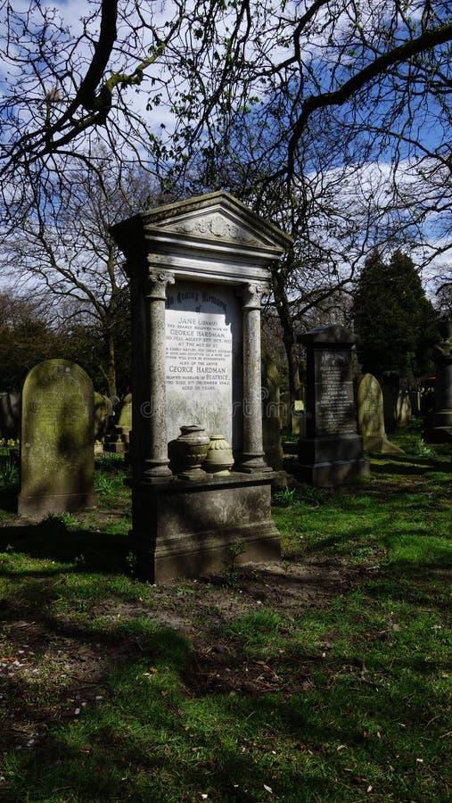 Grafstenen in een boskerkhof stock foto's