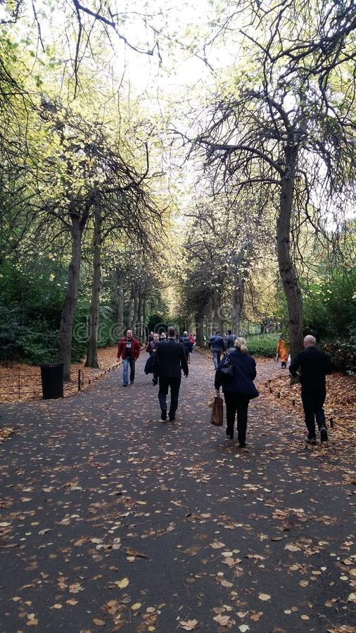 Grafton公园,都伯林,爱尔兰,在秋天的宜人的步行 免版税库存照片
