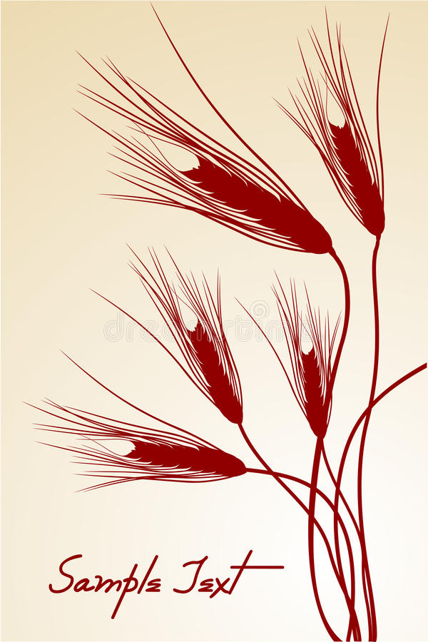 Download Grain stock illustration. Illustration of agriculture - 17557616