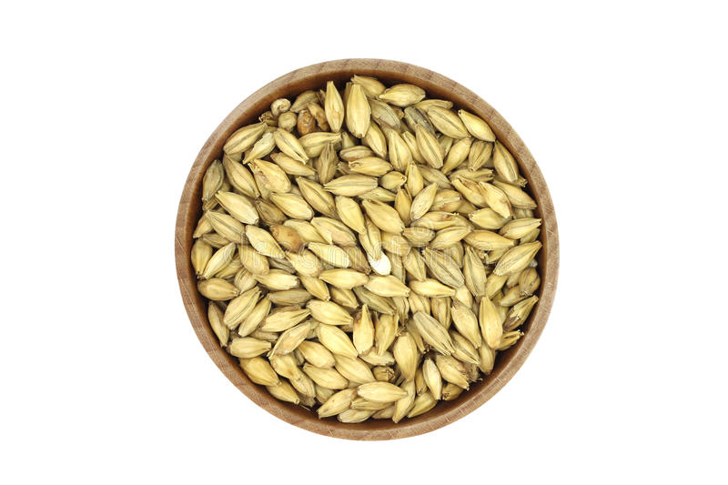 Grain barley malt in a wooden bowl royalty free stock images