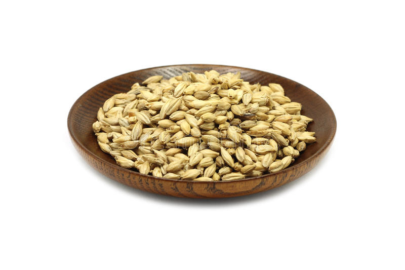 Grain barley malt in a wooden plate royalty free stock photography