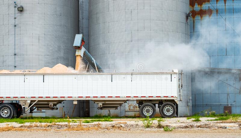 Grain Being Loaded From Silo Into Semi Truck royalty free stock images