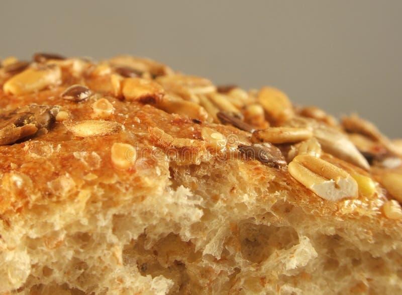 Grain bread stock photos