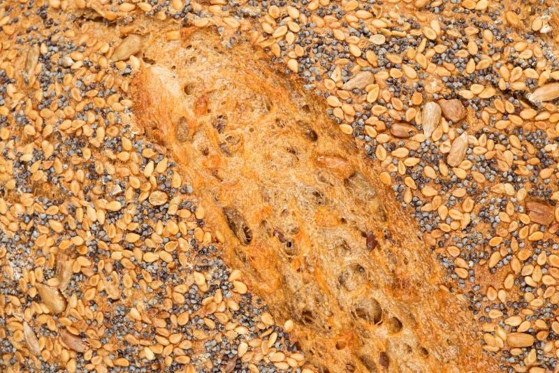 Grain bread details stock images