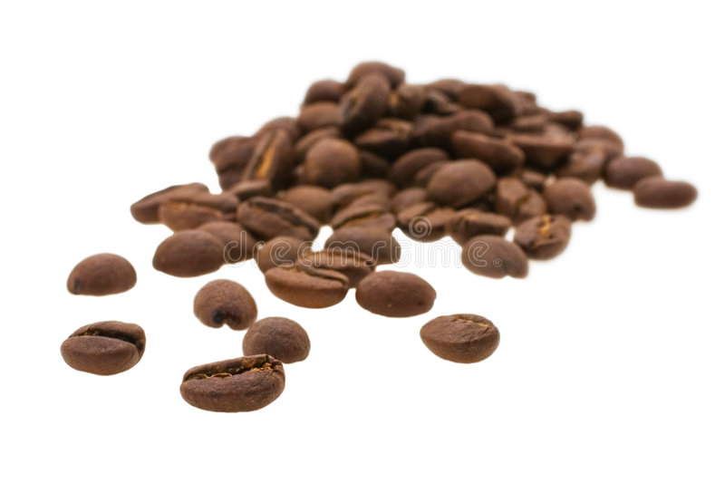 Grain coffee. Arabiko taken pictures on white background royalty free stock image