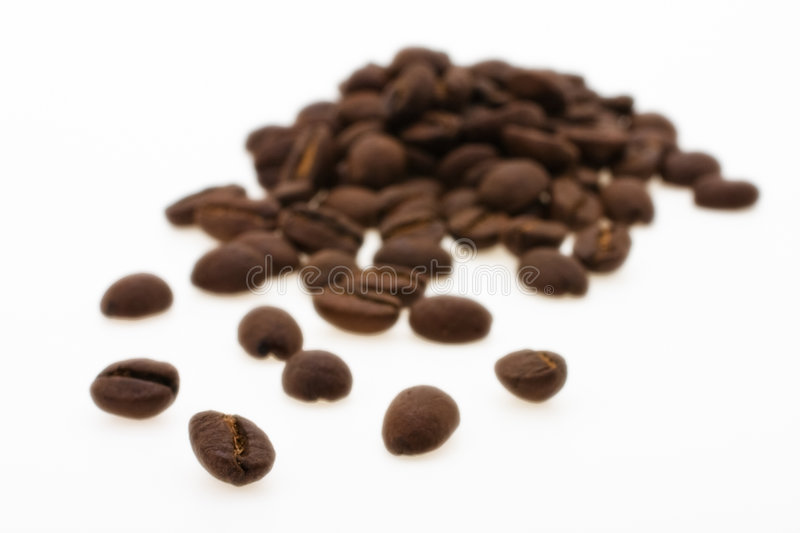 Grain coffee. Arabiko taken pictures on white background royalty free stock images