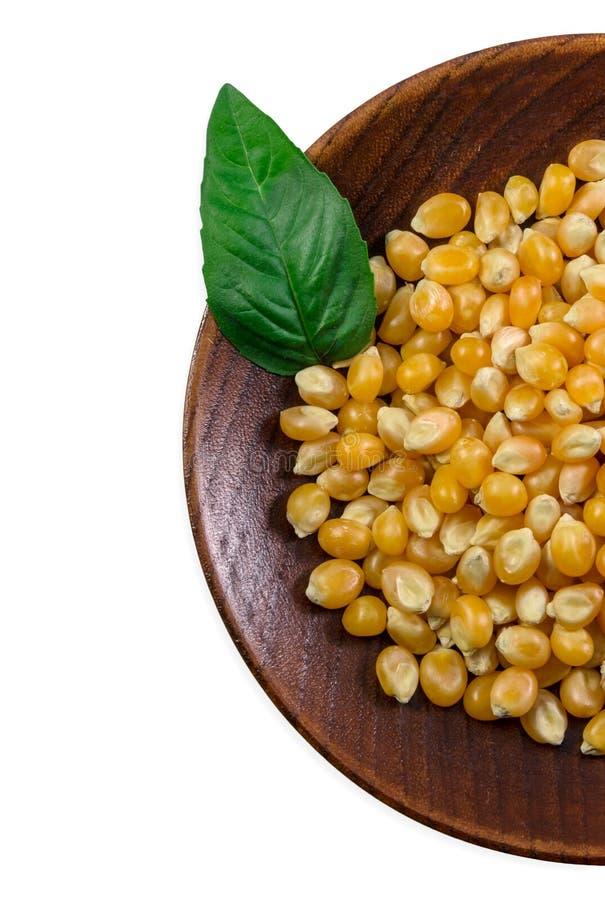 Grain corn royalty free stock photos