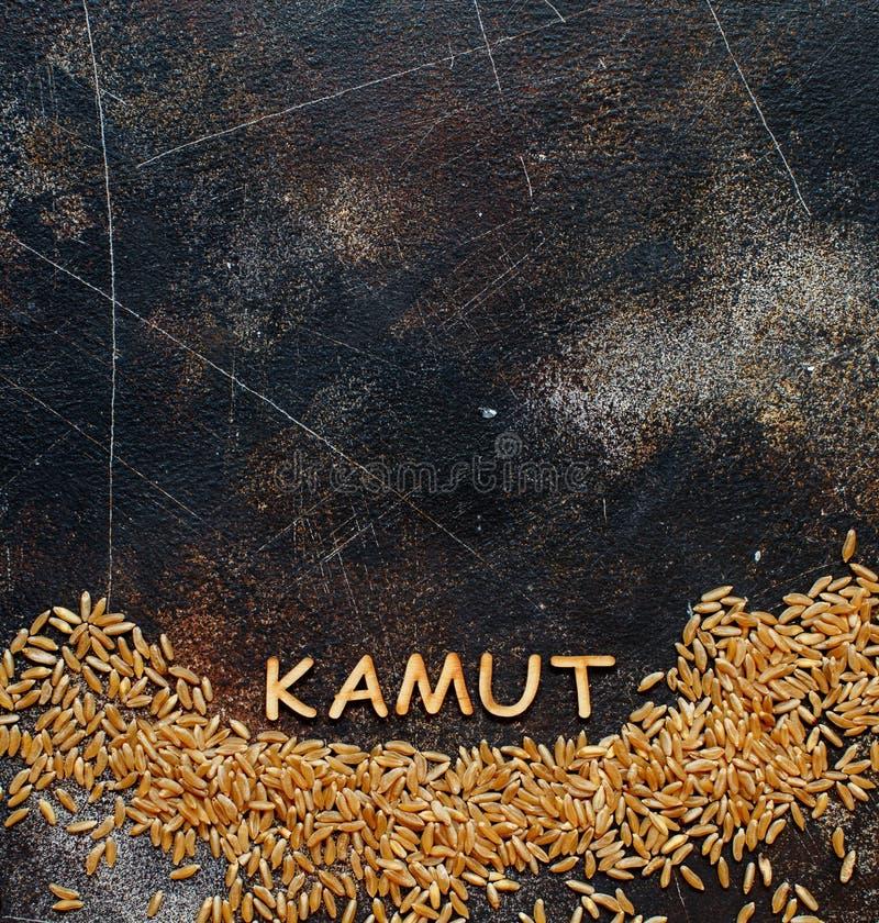 Grain cru de Kamut avec une vue supérieure de Kamut de mot photos stock