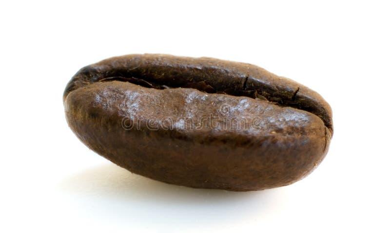 Download Grain de café photo stock. Image du java, isolement, breakfast - 738052