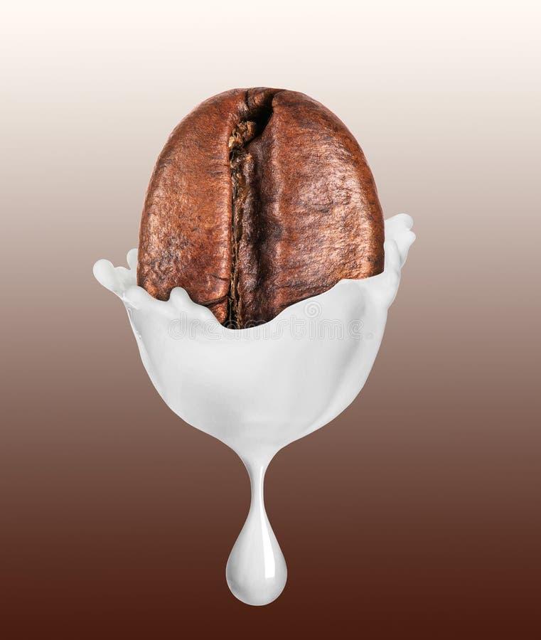 Grain de café avec la baisse de lait image stock