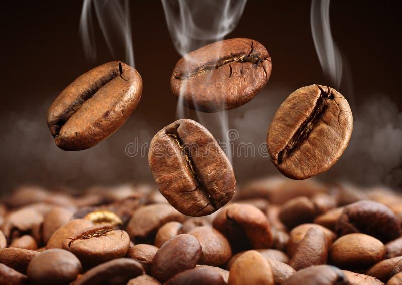 Grain de café en baisse de plan rapproché avec de la fumée sur le fond brun photos libres de droits
