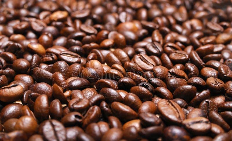 Grain de café rôti image stock