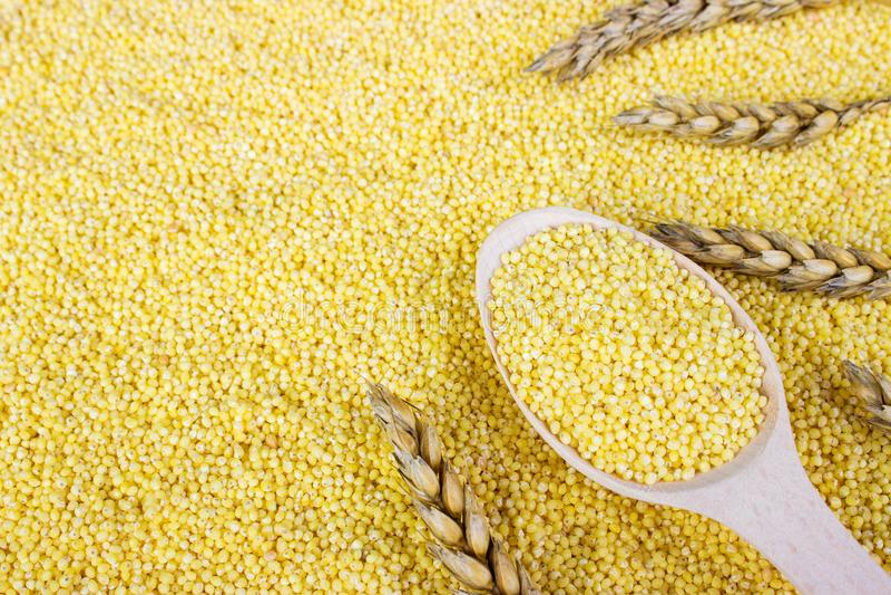 grain de millet avec du blé Graines de millet dans une cuillère en bois sur le fond de cuillère photographie stock libre de droits