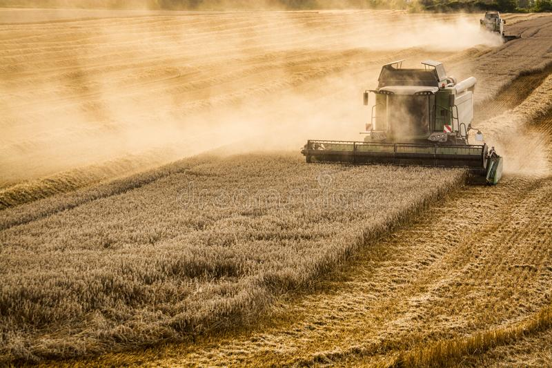 Grain de récolte mécanisée dans la République Tchèque photos libres de droits
