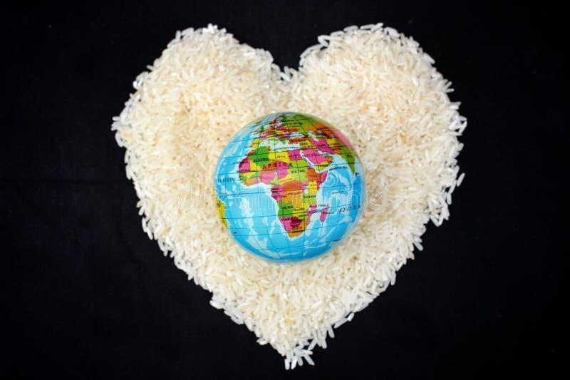 Grain de riz photographie stock libre de droits