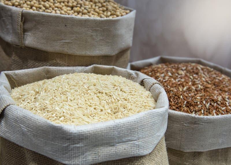 Grain de riz dans le sac à chanvre, riz de jasmin, riz brun, riz rouge image stock