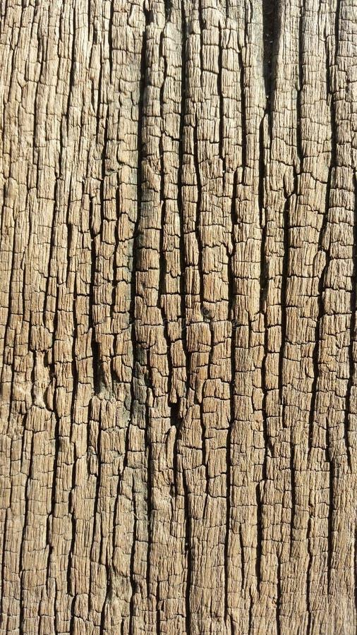 Grain en bois images stock