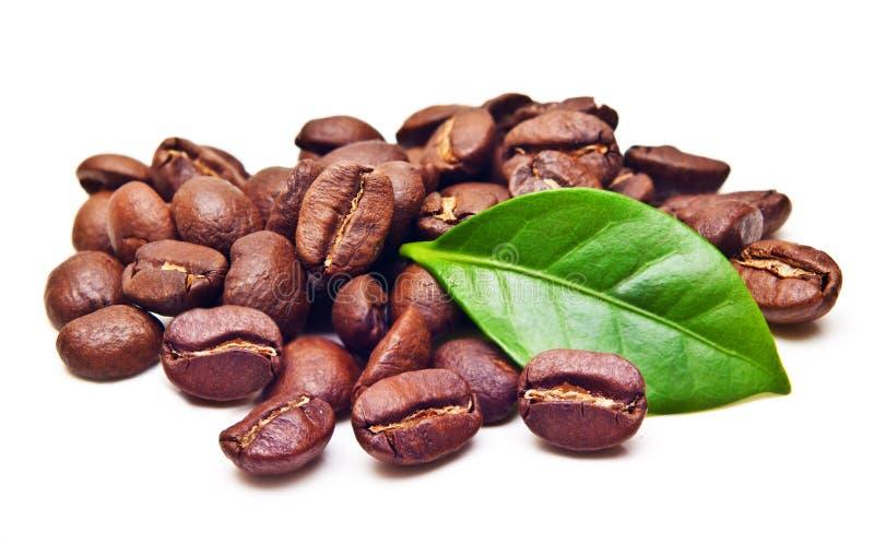 Grain noir de grains de café avec la feuille photographie stock