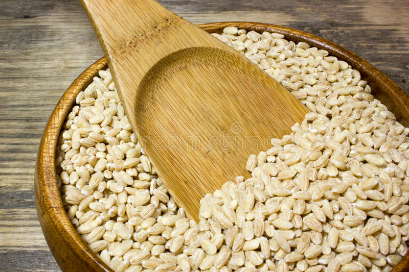 Grain of pearl Barley and wooden spoon stock photography