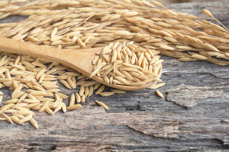 Grain and rice on wood table stock image