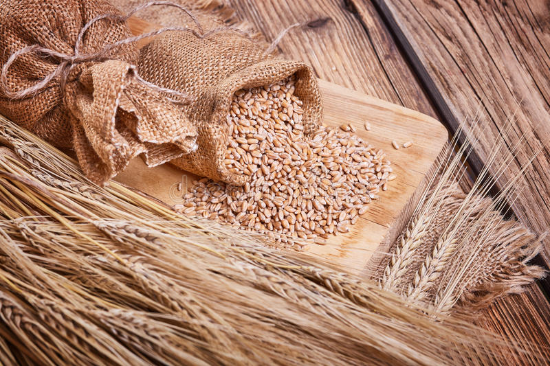 Grain in sacks and ears of wheat royalty free stock photography