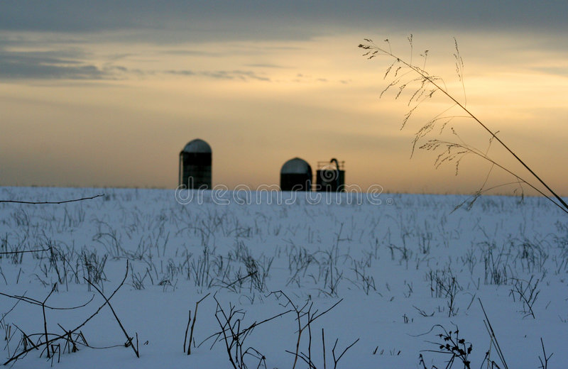 Grain towers in winter stock photo