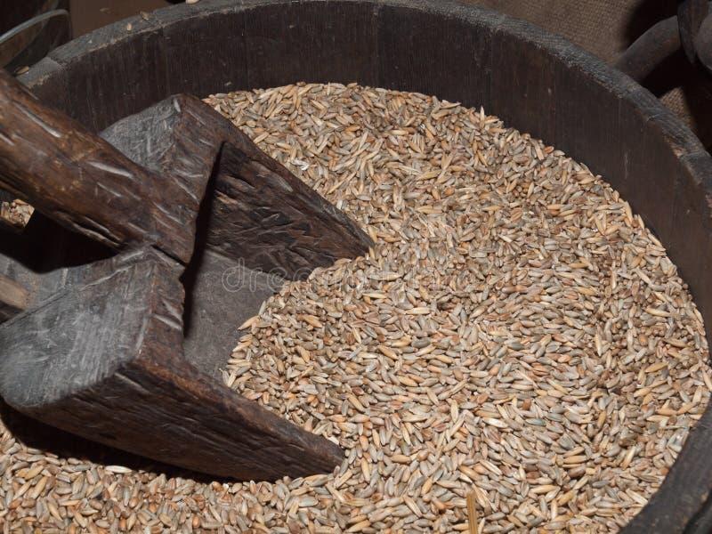 Download Grain in vintage Barrel stock image. Image of mill, shovel - 15309885
