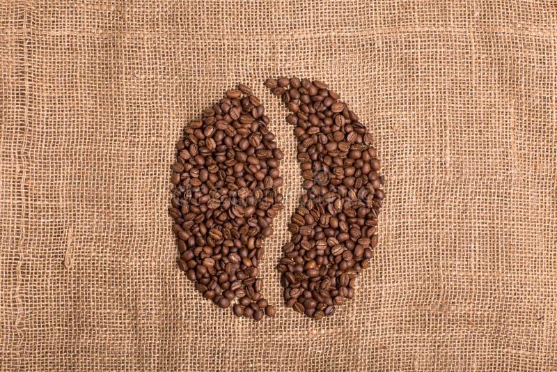 Graine de café sur le fond brun texturisé de tissu images libres de droits