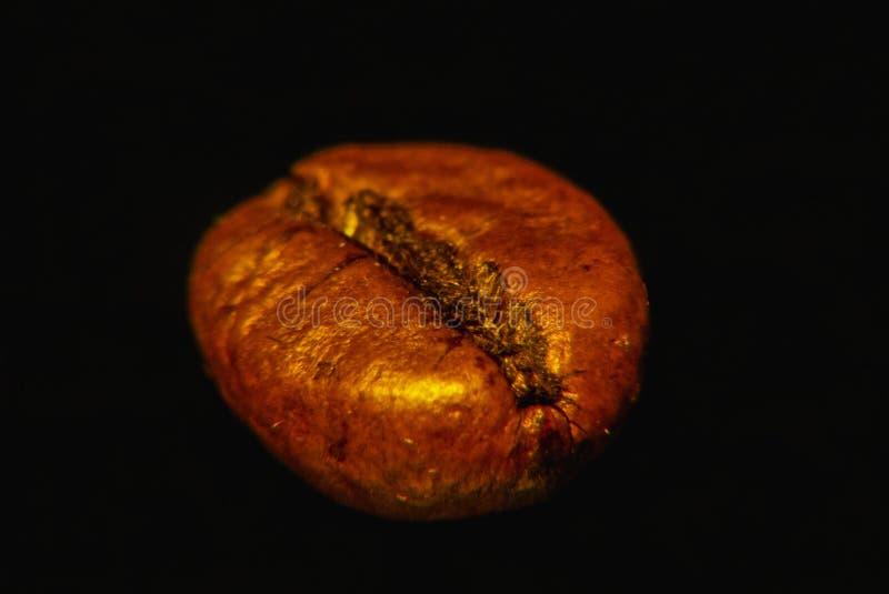 Graine de café sur le fond noir magnifié, plan rapproché, macro images stock