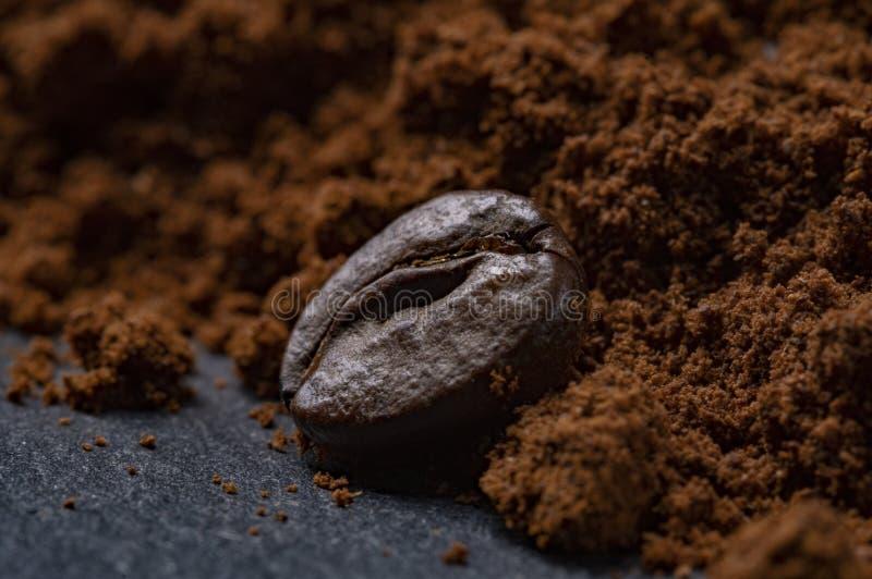 Graine de caf? photographie stock libre de droits