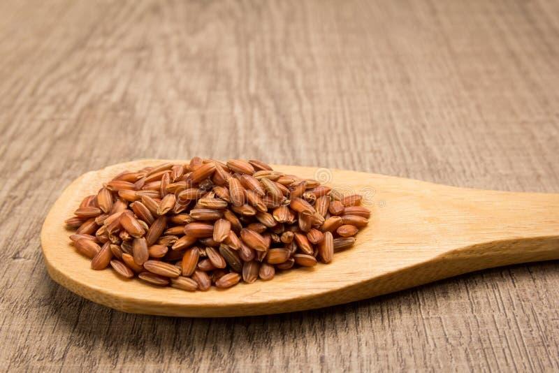 Graine rouge bhoutanaise de riz Grains dans la cuillère en bois rustique image libre de droits