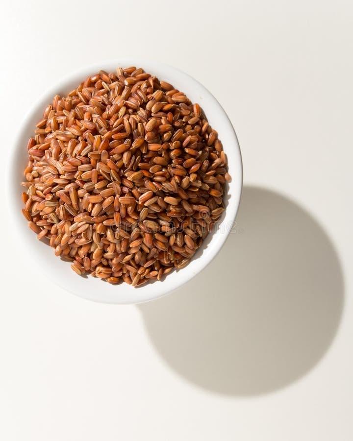 Graine rouge de riz Grains dans une cuvette Ombre au-dessus de la table blanche photos stock