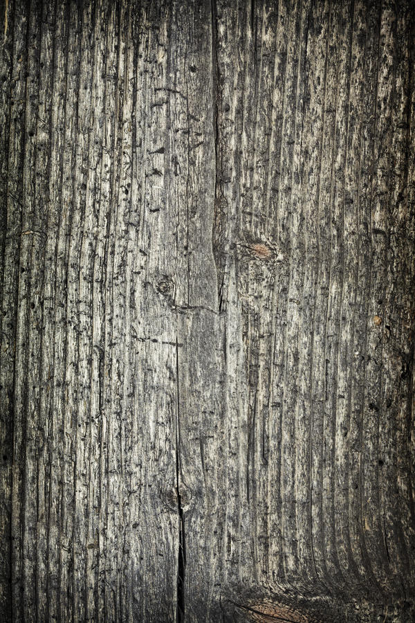 Download Grained wood stock image. Image of element, grunge, shabby - 13230297