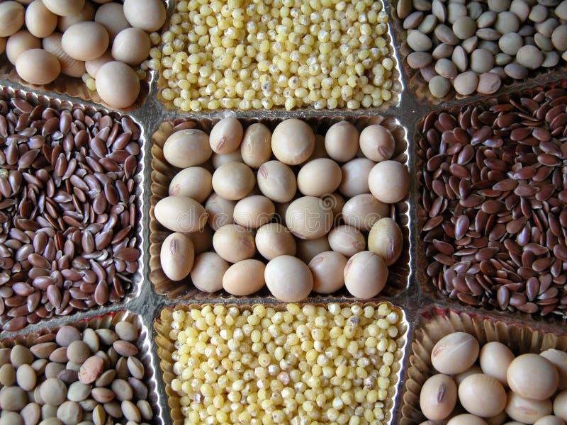 Graines photos stock