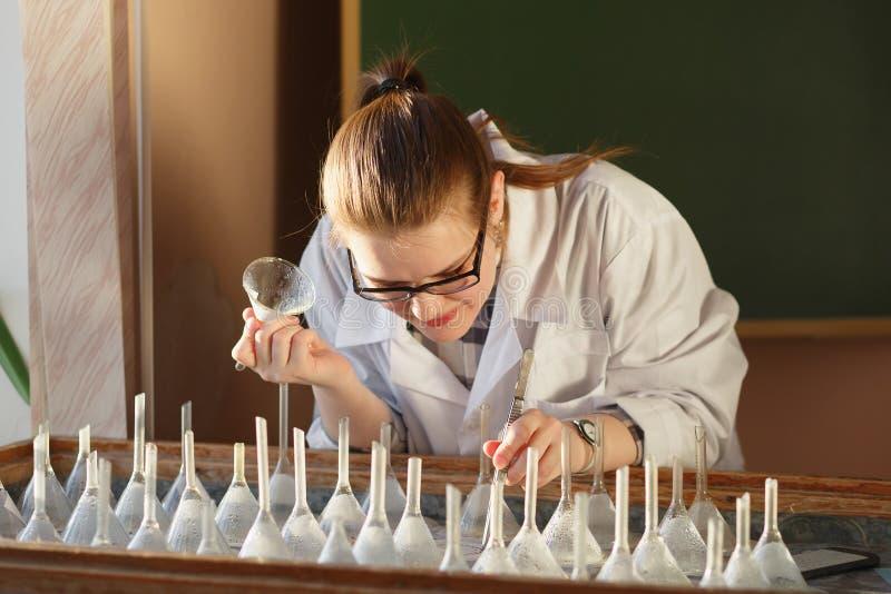 Graines analizing d'étudiant de troisième cycle de femme sur la table de germination photos stock
