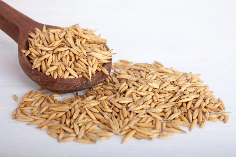 Graines d'avoine dans la cuill?re en bois sur le fond blanc, vue sup?rieure photo libre de droits