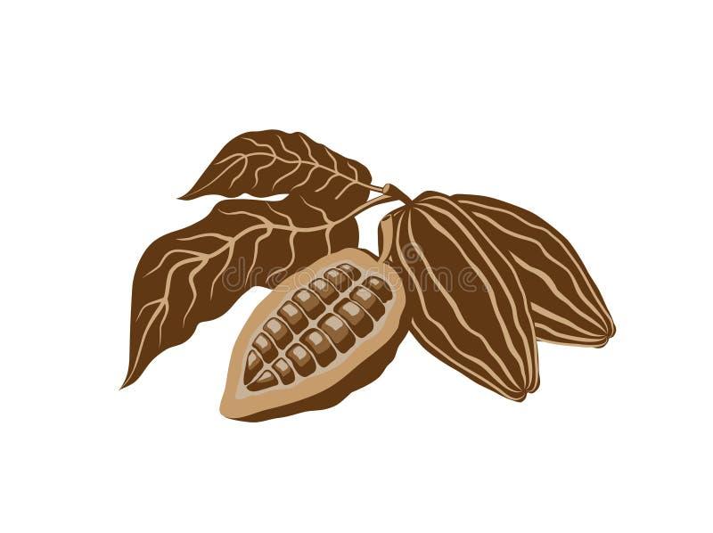 Graines de cacao illustration libre de droits