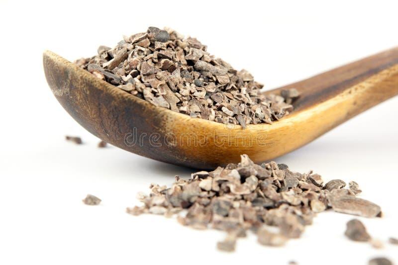 Graines de cacao image stock