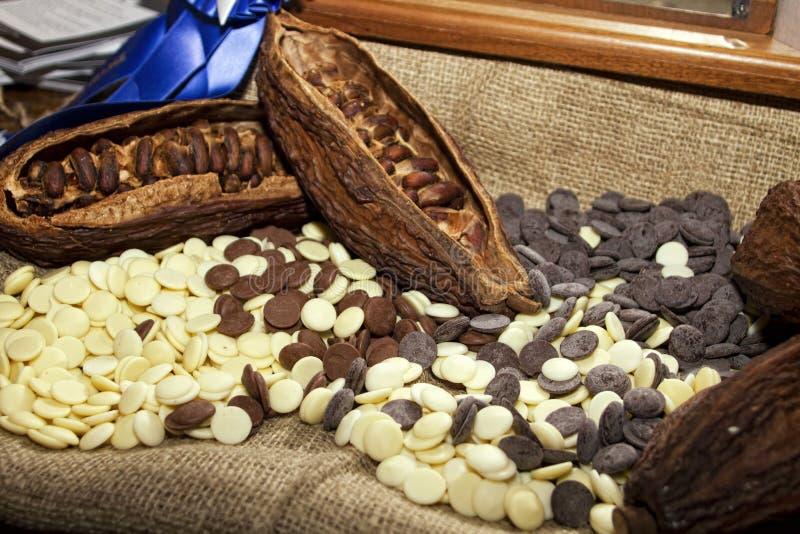 Graines de cacao avec du chocolat blanc et foncé photographie stock