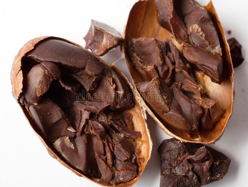Graines de cacao crues photographie stock libre de droits