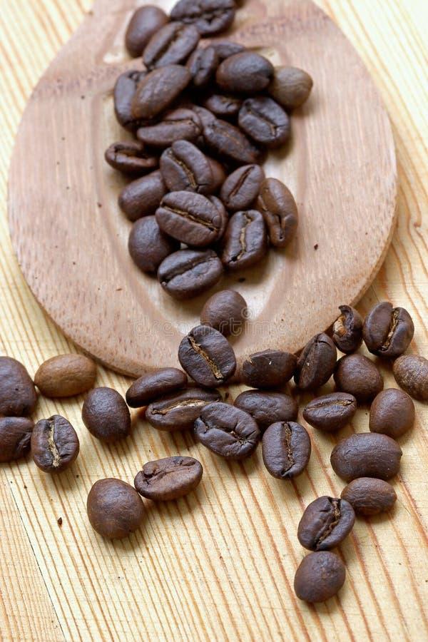 Graines de café photo stock