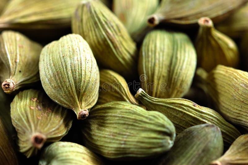 Graines de cardamome image stock