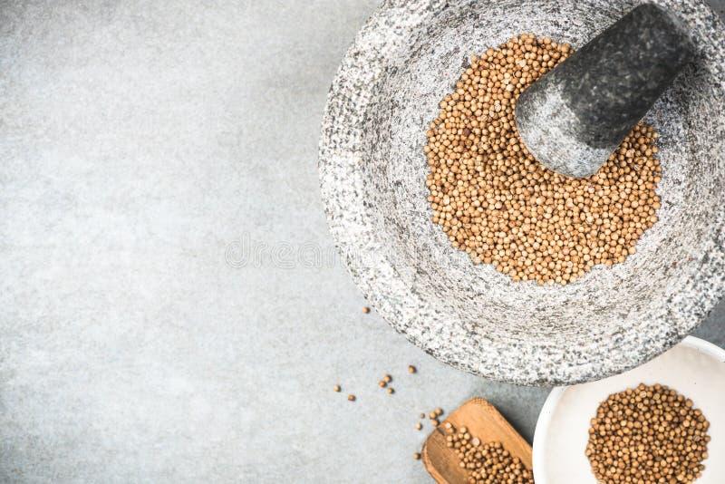 Graines de coriandre en pilon ou mortier de granit photographie stock libre de droits