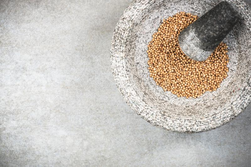 Graines de coriandre en pilon ou mortier de granit photos libres de droits